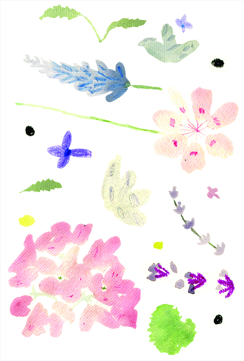 BCG_illustrations.jpg