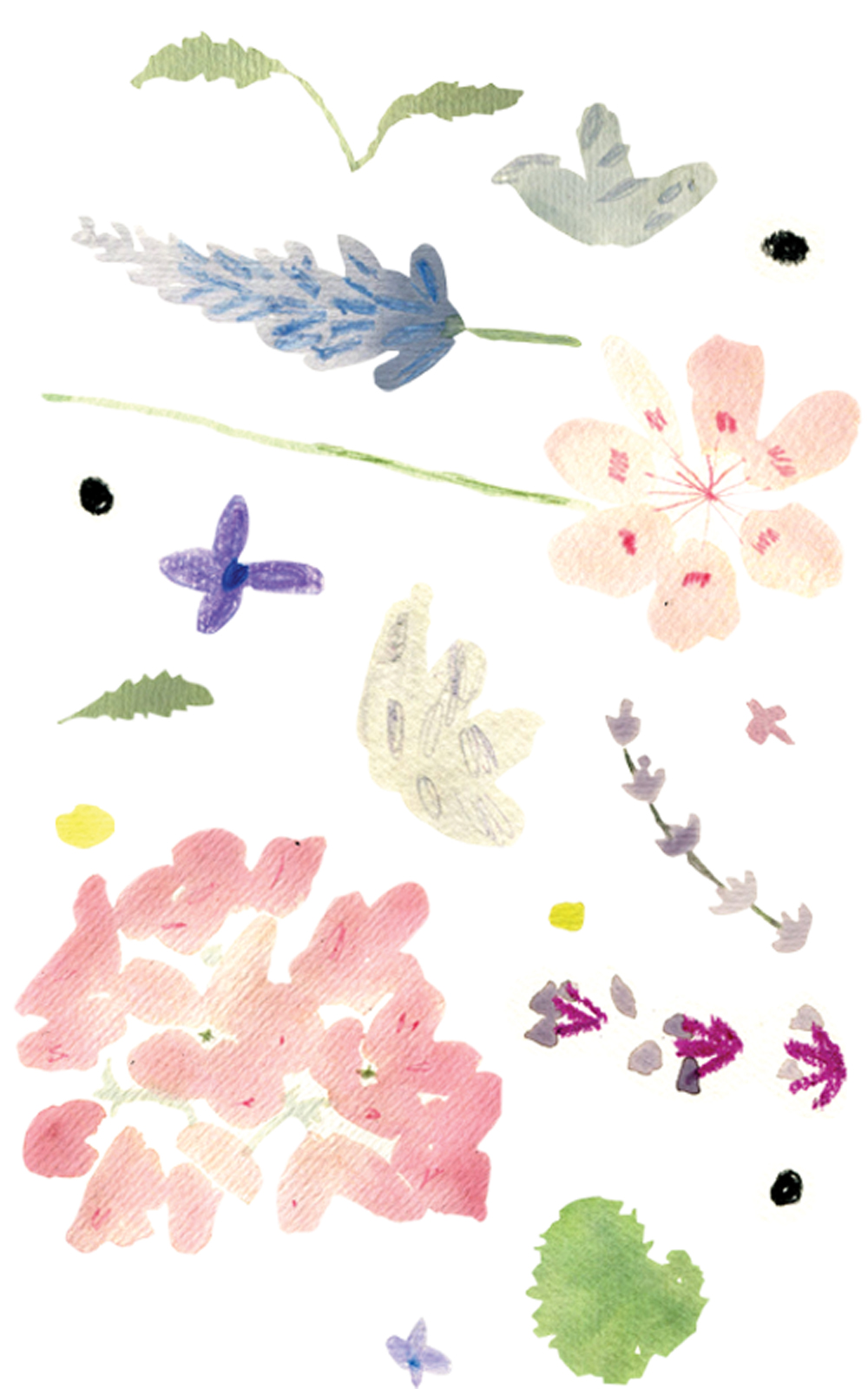 watercolors4