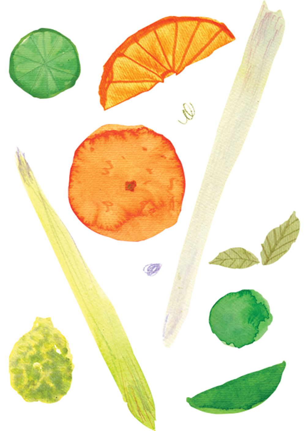 watercolors7