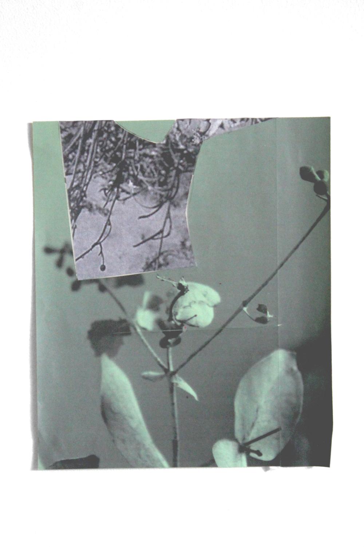 Mundane, mixed meida collage, 24 x 28cm / 2017